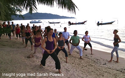 Insight yoga med Sarah Powers